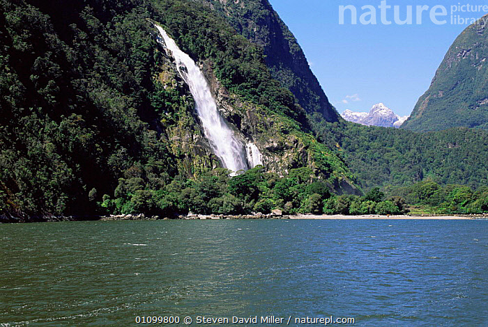 Bowen Falls from Cemetery Point,Milford Sound Fiordland NP South Island, New Zealand  ,  FIORDS,FJORDS,HORIZONTAL,LANDSCAPES,MILFORD,NATIONAL,NEW ZEALAND,PARK,POINT,RESERVE,SCENICS,SPRAY,WATER,WATERFALLS,AUSTRALASIA  ,  Steven David Miller