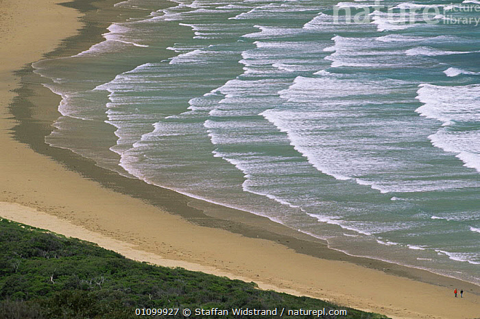 Looking down onto Wilson's Promontory NP coastline, Victoria, Australia  ,  AUSTRALASIA,AUSTRALIA,BEACHES,COASTAL WATERS,COASTS,LANDSCAPES,MARINE,NP,RESERVE,SEA,WAVES,National Park,Catalogue1  ,  Staffan Widstrand