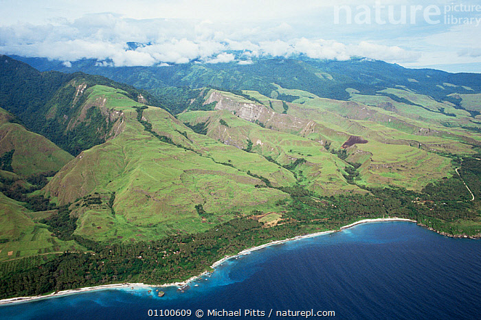 Aerial view of uplifted coral terraces, Huon Peninsula, Papua New Guinea  ,  AERIALS,ASIA,COASTS,CORAL REEFS,CORALS,HORIZONTAL,LANDSCAPES,PAPUA NEW GUINEA,SOUTH EAST ASIA,TREES,Marine,Plants,WEST-AFRICA,NEW GUINEA,Africa  ,  Michael Pitts