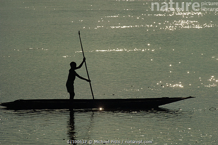 Boy on canoe silhouetted on Sepik River, Sepik Region, Papua New Guinea  ,  ASIA,CANOES,MALES,MAN,PAPUA NEW GUINEA,PEOPLE,RIVERS,SILHOUETTES,SOUTH EAST ASIA,TRADITIONAL,TRANSPORT,WATER,WEST-AFRICA,OPEN-BOATS, BOATS,NEW GUINEA, BOATS,Africa  ,  Michael Pitts