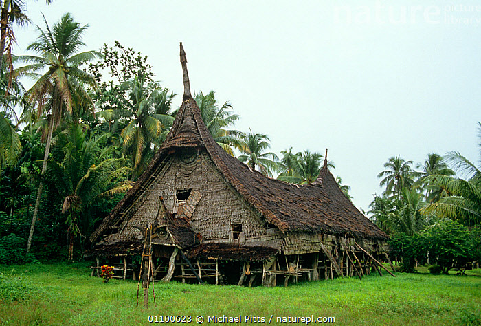 Spirit or Long house at Gojomas village, Sepik Region, Papua New Guinea  ,  ASIA,BUILDINGS,CULTURES,HOMES,OLD,PAPUA NEW GUINEA,PEOPLE,SOUTH EAST ASIA,TRADITIONAL,TRIBES,TROPICS,WEST-AFRICA,NEW GUINEA,Africa  ,  Michael Pitts