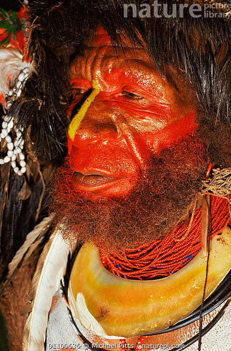 Close up of painted face of Huli wigman, Central Highlands, Papua New Guinea  ,  ASIA,CLOSE UPS,COLOURFUL,CULTURES,FACES,FEATHERS,HEADS,HIGHLANDS,MALES,MAN,PAPUA NEW GUINEA,PEOPLE,SOUTH EAST ASIA,TRADITIONAL,TRIBES,VERTICAL,WEST-AFRICA  ,  Michael Pitts