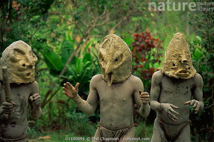 "Dance of the Asaro ""madman"" mask and mud, Central Higlands, Papua New Guinea, 1991  ,  ASIA,CEREMONIES,CULTURES,DANCING,GROUPS,MALES,MASKS,PAPUA NEW GUINEA,PEOPLE,SOUTH EAST ASIA,TRADITIONAL,TRIBAL,TRIBES,WEST-AFRICA  ,  Phil Chapman"