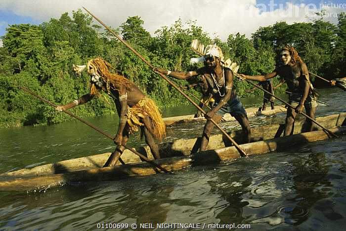 Asmat war canoe with tribal people on river, Irian Jaya / West Papua, New Guinea 1991 (West Papua).  ,  ASIA,BOATS,GROUPS,HORIZONTAL,PAPUA NEW GUINEA,PEOPLE,RIVERS,SOUTH EAST ASIA,TRADITIONAL,TRIBES,WATER,WETLANDS,NEW GUINEA  ,  NEIL NIGHTINGALE