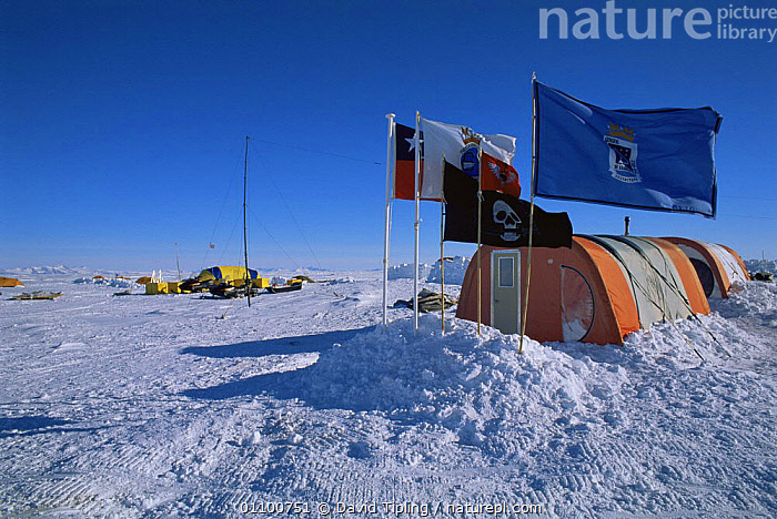 Chilean base with tents and campsite, Patriot Hills, Antarctica  ,  ANTARCTICA,HORIZONTAL,LANDSCAPES,POLAR,RESEARCH  ,  David Tipling