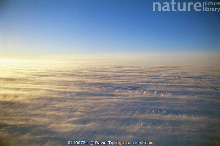 Coats land landscapes, Antarctic Plateau with howling winds, Antarctica  ,  ANTARCTICA,BAD,COLD,HORIZONTAL,ICE,LANDSCAPES,POLAR,STORMS,WEATHER,WIND  ,  David Tipling
