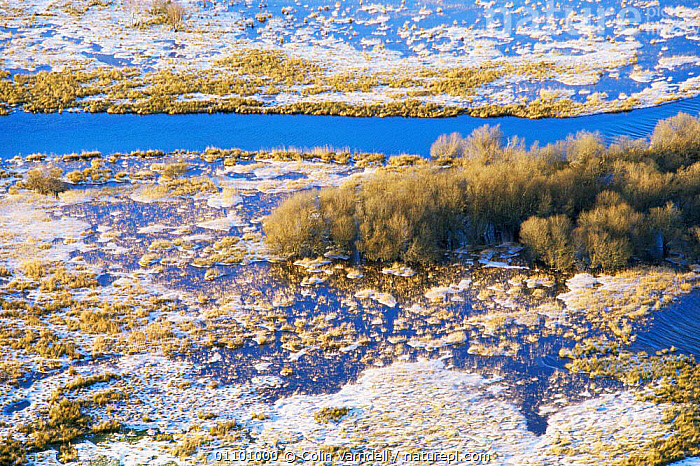 Looking down on River Derwent in flood, in winter with ice and frost, Cumbria  ,  ABSTRACT,COLD,ENGLAND,EUROPE,LANDSCAPES,RESERVE,RIVERS,SNOW,UK,WETLANDS,WINTER,United Kingdom,British  ,  Colin Varndell