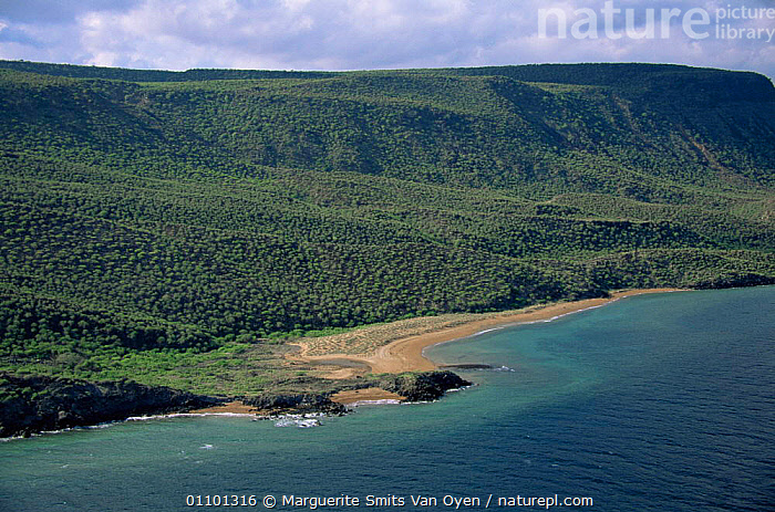 Aerial view of ragged desolate coastline of Djibouti at entrance to Red Sea, E Africa  ,  AFRICA,ARABIA,COASTS,EAST AFRICA,LANDSCAPES,RED SEA,Marine,EAST-AFRICA  ,  Marguerite Smits Van Oyen
