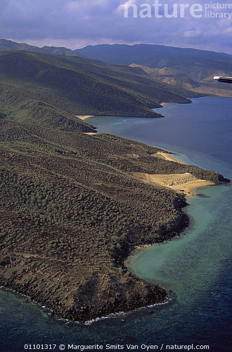 Aerial view of ragged desolate coastline of Djibouti, at entrance to Red Sea, East Africa  ,  AERIALS,AFRICA,COASTAL WATERS,COASTS,EAST AFRICA,LANDSCAPES,RED,RED SEA,VERTICAL,Marine,EAST-AFRICA  ,  Marguerite Smits Van Oyen
