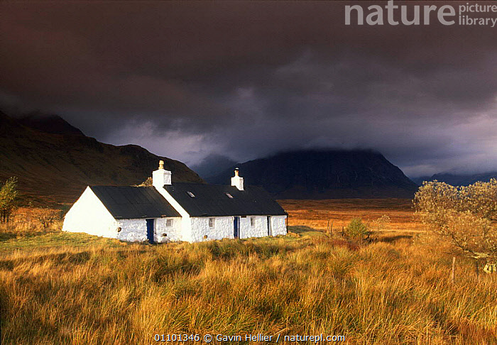 Blackrock Cottage with storm behind, Rannoch Moors, Scottish Highlands, Scotland UK  ,  ATMOSPHERIC,BAD WEATHER,BRITISH,BUILDING,BUILDINGS,CLOUD,CLOUDS,COTTAGE,EUROPE,GHE,HOME,HORIZONTAL,HOUSE,HOUSES,LANDSCAPES,MOORLAND,MOORS,MOUNTAINS,SCENICS,SCOTTISH,STORM,STORMS,STORMY,TRAVEL,UK,UNITED KINGDOM,WEATHER  ,  Gavin Hellier