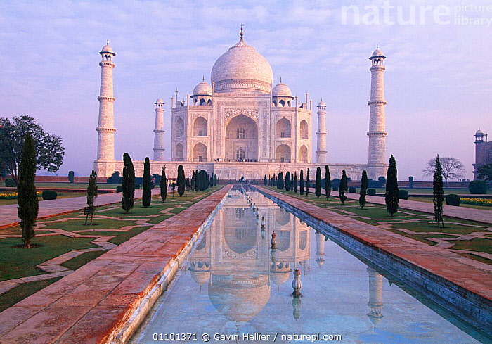 The Taj Mahal at sunrise, Agra, Uttar Pradesh, India  ,  ARCHITECTURE,ASIA,ATTRACTION,BEAUTIFUL,BUILDINGS,CONCEPTS,DAWN,DOME,FAMOUS,GARDEN,GARDENS,GHE,HORIZONTAL,INDIAN SUBCONTINENT,LANDMARK,LANDSCAPES,MANMADE,MONUMENT,MORNING,PEACEFUL,PEOPLE,SCENICS,STUNNING,SUNRISE,TEMPLE,TEMPLES,TOURISM,TRAVEL,WATER,INDIAN-SUBCONTINENT  ,  Gavin Hellier