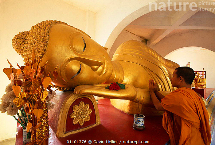 Reclining Buddha and novice Monk, Wat Pha Baat Tai, Luang Prabang, Laos, South East Asia.  ,  ASIA,BUDDHA,BUDDHISM,BUDDHIST,CULTURE,CULTURES,EAST,FACES,GHE,GOLD,HEADS,HORIZONTAL,ORANGE,PEOPLE,RECLINING,RELEASED,RELIGION,RELIGIOUS,ROBE,SOUTH,SOUTH EAST ASIA,STATUE,STATUES,TEMPLE,TEMPLES,TRAVEL,SOUTH-EAST-ASIA  ,  Gavin Hellier