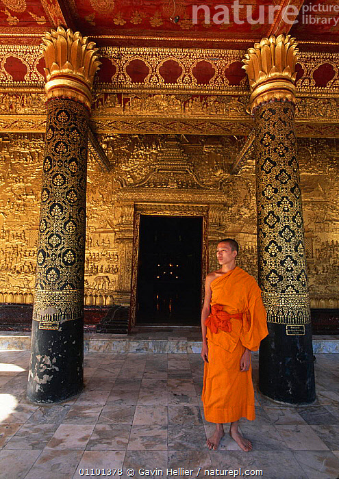 Buddhist monk by Gold Relief on Wat Mai Suwannaphumaham, Luang Prabang, Laos, South East Asia  ,  ANCIENT,ASIA,BUDDHISM,BUDDHIST,BUILDINGS,CULTURE,CULTURES,EAST,GHE,GOLD,LANDSCAPES,MALE,MAN,MONK,OLD,ORNATE,PEOPLE,RELIEF,RELIGION,RELIGIOUS,SOUTH,SOUTH EAST ASIA,TEMPLE,TEMPLES,TRAVEL,VERTICAL,YOUNG,SOUTH-EAST-ASIA  ,  Gavin Hellier