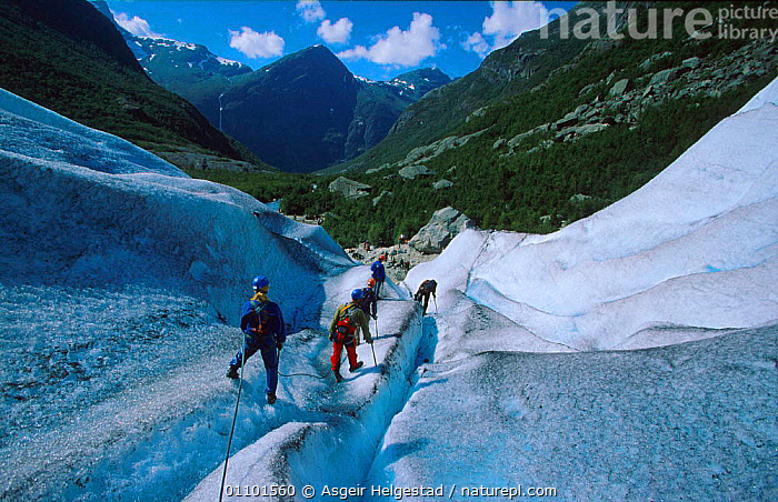 Climbers on Briksdal glacier, Jostedalsbreen NP, Olden, Sogn og Fjordane, Norway  ,  AHE,ASGEIR,BRIKSDAL,CLIMBERS,CLIMBING,D,DIG,DIGITAL,FJORDANE,GEOLOGY,GLACIER,GLACIERS,HELGESTAD,HORIZONTAL,ICE,JOSTEDALSBREEN,LANDSCAPE,LANDSCAPES,LEISURE,NATIONAL PARK,NP,OG,OLDEN,PEOPLE,PLANTS,RESERVE,SCANDINAVIA,SCENIC,SCENICS,SOGN,Europe, Scandinavia  ,  Asgeir Helgestad