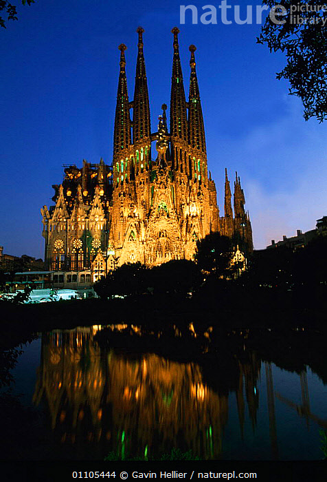 Gaudi's La Sagrada Familia church floodlit at night, Barcelona, Catalunya  ,  ARCHITECTURE,ATTRACTION,BARCELONA,BUILDINGS,CATALONIA,CATHEDRAL,CITIES,CITY,GHE,LANDMARK,NIGHT,REFLECTIONS,SPIRES,TRAVEL,VERTICAL,WATER ,CHURCHES,Europe  ,  Gavin Hellier
