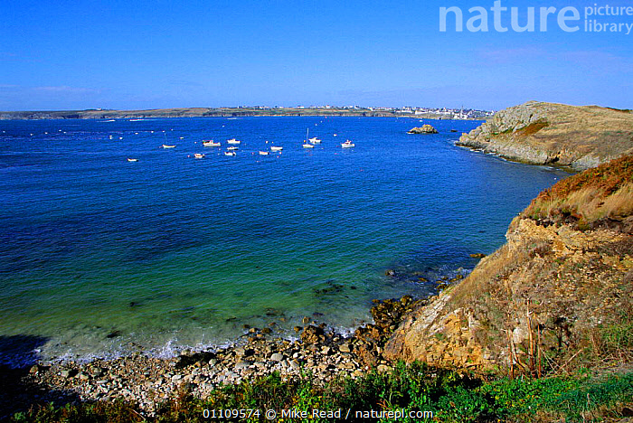 Boats moored in Baie de Lampaul, Ile d'Ouessant, Brittany, France, SCENIC,ROCKY,SEA,OUESSANT,COASTS,BUILDINGS,VILLAGES,SCENICS,ATLANTIC,SHORE,LANDSCAPES,LANDSCAPE,Europe, Mike Read