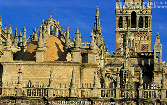 Seville Cathedral rooftop, Andalucia, Spain, BUILDINGS,CHURCH,LANDSCAPES,CHRISTIAN,ROOFS,RELIGION,CITIES ,CHURCHES,Europe, Jose B. Ruiz
