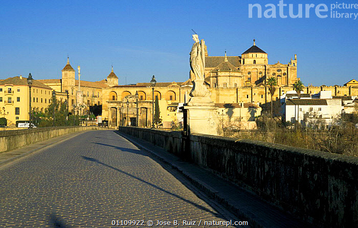 Corboba old town with bridge over river Guadalquivir, Andalucia, Spain, CHURCH,ROADS,CITIES,STATUE,BUILDINGS,LANDSCAPES ,CHURCHES,Europe, Jose B. Ruiz