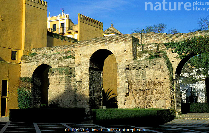 Archways in old wall, Patio Monteria, Alcazar, Seville, Andalucia, Spain, LANDSCAPES,WALLS,CITIES,BUILDINGS,Europe, Jose B. Ruiz