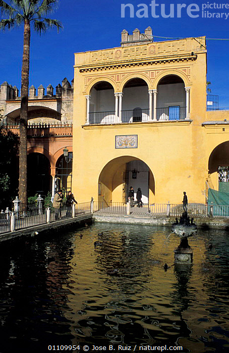 Palacio Gotico, Alcazar, Seville, Andalucia, Spain, CITIES,WATER,LANDSCAPES,PONDS,BUILDINGS,Europe, Jose B. Ruiz