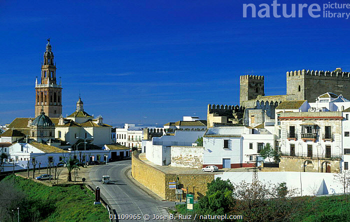 Carmona, Seville, Andalucia, Spain, LANDSCAPES,BUILDINGS,TOWNS,CITIES,Europe, Jose B. Ruiz