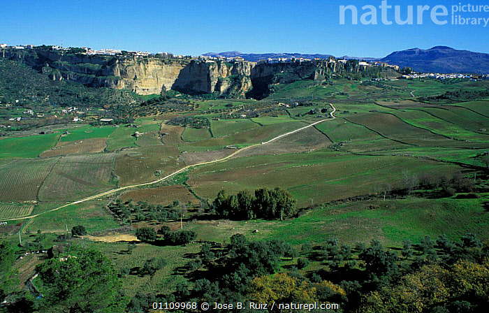 Village on top of cliff with valley below, Ronda, Malaga, Andalucia, Spain, CLIFFS,TRAVEL,VILLAGES,SCENICS,LANDSCAPES,Geology,Europe, Jose B. Ruiz
