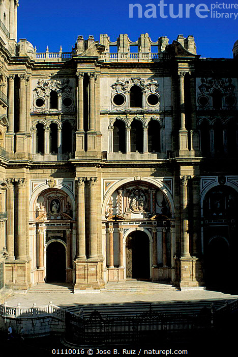 Malaga cathedral, Andalucia, Spain, CHURCHES,BUILDINGS,LANDSCAPES,CITIES,RELIGION,CHRISTIAN,Europe, Jose B. Ruiz