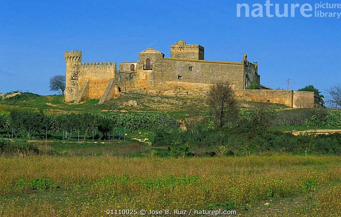 Marchenilla castle, Alcala Guadaira, Andalucia, Spain, BUILDINGS,SEVILLE,LANDSCAPES ,CASTLES,Europe, Jose B. Ruiz