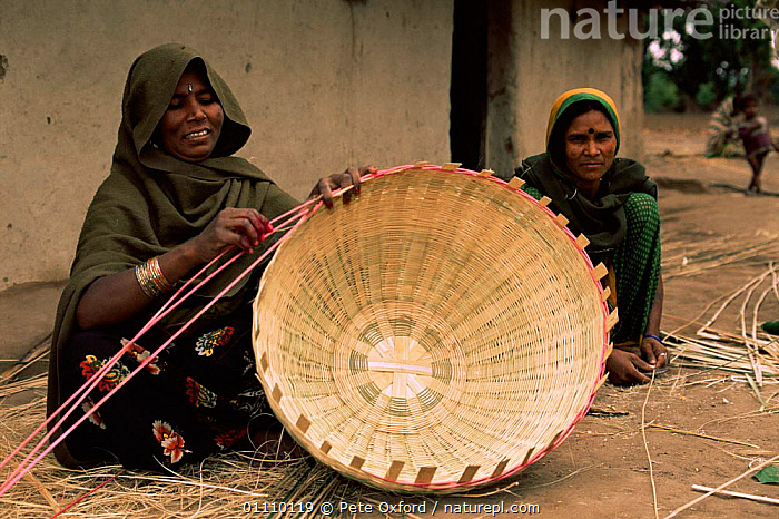 Woman making basket near Bandhavgarh NP, Central India, ASIA,CRAFTS,GRASSES,HORIZONTAL,NP,PEOPLE,TOURISM,TRADE,TRADITIONAL,VERTICAL,WOMAN,WORKING,National Park,SCOTLAND,INDIAN-SUBCONTINENT, Pete Oxford