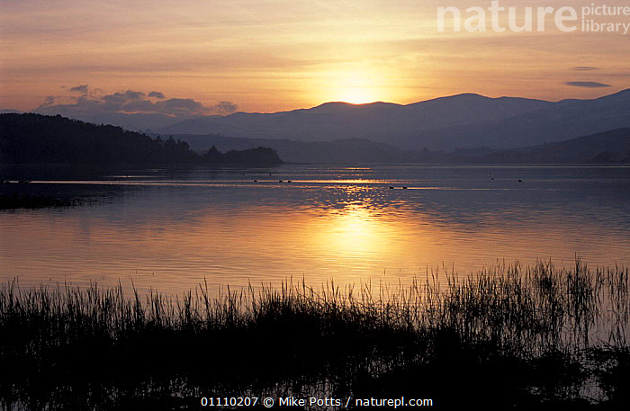 Conwy estuary at dawn in winter, Gwynedd, Wales, UK, LANDSCAPE,SCENICS,ESTUARIES,EUROPE,SCENIC,LANDSCAPES,SUNRISE,WALES,United Kingdom, Mike Potts