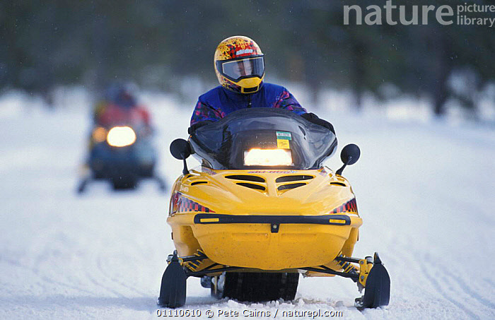 Snowmobile road in winter. Yellowstone NP, Wyoming, USA, LANDSCAPES,PEOPLE,NORTH AMERICA,RESERVE,VEHICLES,DAMAGE,TRANSPORT,WINTER,USA, Pete Cairns