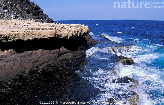 Sea ledges on The Seven Brothers coral islands, Djibouti, East Africa  ,  COASTS,EAST AFRICA,LANDSCAPE,LEDGE,COAST,CORAL REEFS,LANDSCAPES,ROCK FORMATIONS,AFRICA,MARINE,GEOLOGY,EAST-AFRICA  ,  Marguerite Smits Van Oyen
