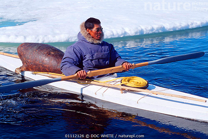 Inuit hunter in kayak with hunting gear including sealskin float, Canadian Arctic  ,  BOATS,CULTURES,HUNTER,HUNTING,INUIT,KAYAKS,NORTH AMERICA,PEOPLE,TRADITIONAL,TRIBES  ,  DOC WHITE