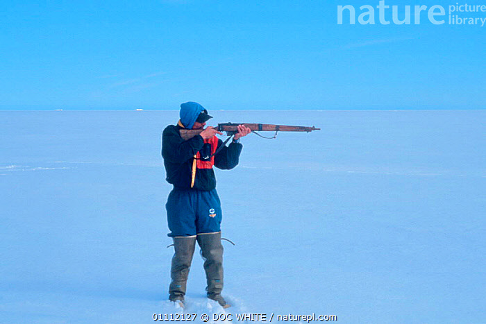 Inuit hunter take aim with gun, Canadian Arctic  ,  CULTURES,GUN,HUNTER,HUNTING,INUIT,NORTH AMERICA,PEOPLE,RIFLE,SHOOTING,TRADITIONAL,WEAPON  ,  DOC WHITE