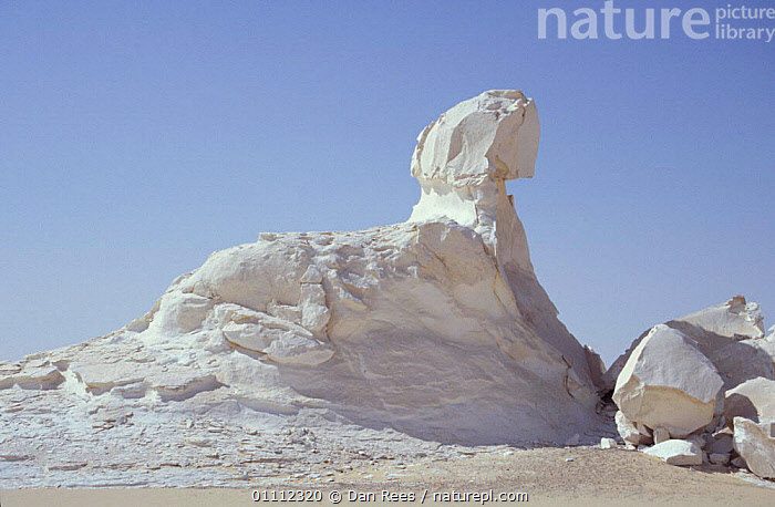 Chalk rock eroded by wind and weathering - resembles the Sphinx, White desert, Egypt  ,  AFRICA,DESERTS,EROSION,GEOLOGY,INTERESTING,LANDSCAPE,LANDSCAPES,RESEMBLE,ROCK FORMATIONS,WEATHER,NORTH-AFRICA  ,  Dan Rees