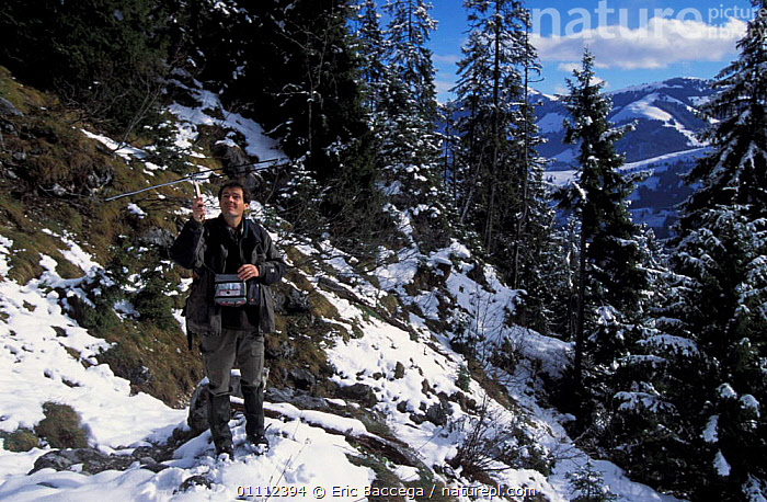 Andreas Ryser tracking Lynx {Lynx lynx} Project Lynx, Vallee du Simmental, Switzerland  ,  ALPS,CARNIVORE,CARNIVORES,CATS,CONSERVATION,EUROPE,EUROPEAN,MAMMAL,MAMMALS,PEOPLE,RADIO,RESEARCH,SCIENCE,SCIENTIST,SNOW,WORKING  ,  Eric Baccega