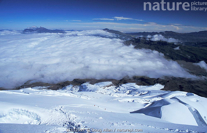 Looking down on climbers ascending Cotopaxi volcano, Ecuador  ,  CLIMBING,LANDSCAPES,MIST,MOUNTAIN,MOUNTAINS,PEOPLE,SNOW,VOLCANOES,GEOLOGY  ,  Doug Allan