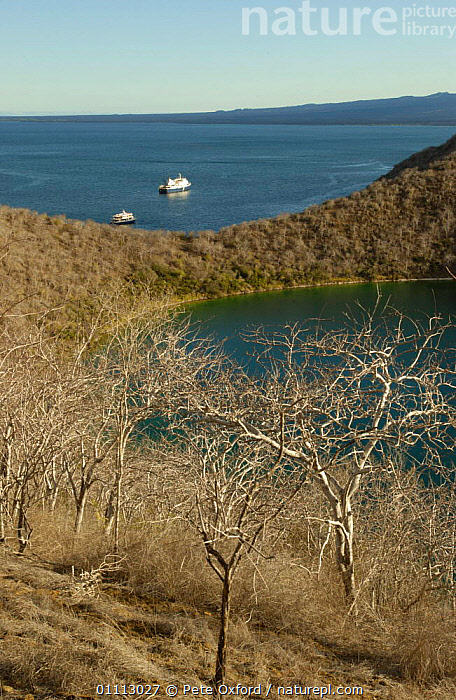 Darwin Bay, Tagus Cove, Isabela Island, Galapagos Is.  ,  DCA,ECUADOR,LANDSCAPES,SOUTH AMERICA,SOUTH-AMERICA  ,  Pete Oxford