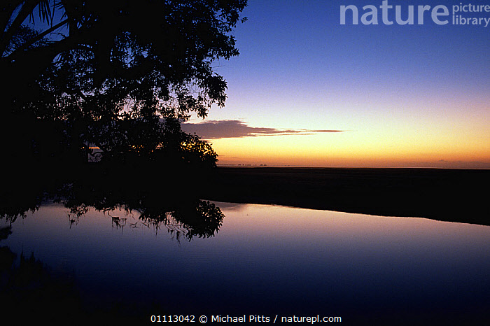 Sunrise over Bensbach river, Papua New Guinea  ,  DAWN,RIVERS,LANDSCAPES,PAPUA NEW GUINEA,WEST-AFRICA  ,  Michael Pitts