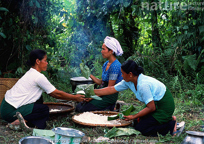 Khamti women prepare a meal, NE India. Khamtis are of Burmese origin with a special ability to catch and train elephants.  ,  ARUNACHAL PRADESH,FOOD,INDIAN SUBCONTINENT,CATCH,TRAIN,ELEPHANTS,PEOPLE,FEEDING,EATING,TRIBES,ASIA,LANDSCAPES,INDIAN-SUBCONTINENT  ,  ASHISH SHANTHI CHANDOLA