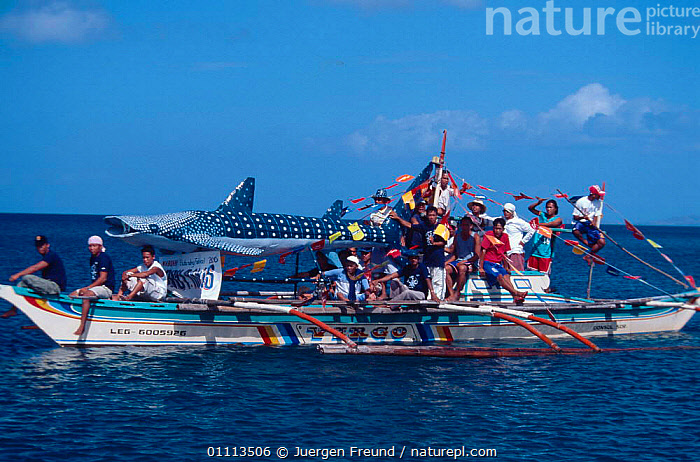 Whale sharks made of bamboo and rice bags during whale shark festival at Fluvial Parade, Donsol, Philippines.  ,  ASIA, ASIAN, CELEBRATION, CELEBRATING, CRAFTS, MODEL, VILLAGE, VILLAGES, WHALE SHARKS, TRADITIONAL, INDIGENOUS,SOUTH-EAST-ASIA  ,  Jurgen Freund