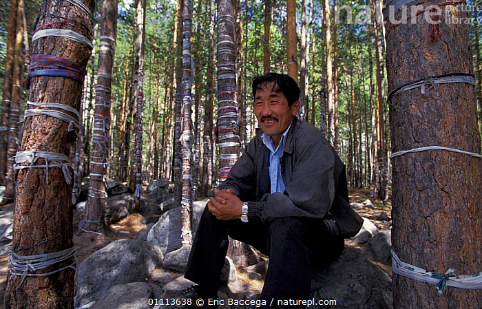 Local man beside trees tied with cloth, Shamanism religion, Lake Baikal, Siberia, Russia  ,  RELIGIOUS,LANDSCAPES,PEOPLE,TRADITIONAL,MALES ,RUSSIA,CIS  ,  Eric Baccega
