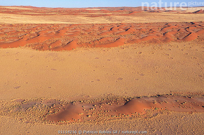Namib desert, Namibia  ,  SOUTHERN AFRICA,LANDSCAPES,DESERTS,SAND DUNES  ,  Patricio Robles Gil