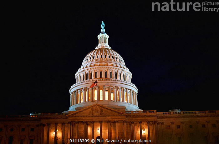 Nature Picture Library United States Capitol Building Floodlit At Night Washington Dc Usa Phil Savoie