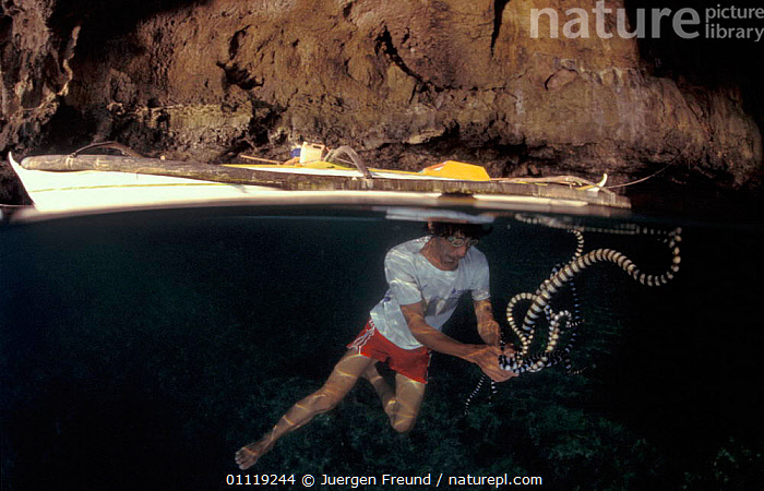 Sea snake fisherman with snakes, split level, Gato Island, Philippines  ,  BOATS,REPTILES,TRADITIONAL,SWIMMING,PEOPLE,POISONOUS,SPLIT LEVEL,UNDERWATER,LANDSCAPES,TRADE,COUGHT,SOUTH-EAST-ASIA,Asia  ,  Jurgen Freund