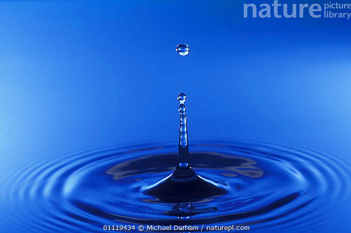 Water rebounding from impact of single drop, sequence 01-Mar  ,  ABSTRACTS,DROPLET,CIRCLE,ARTY SHOTS  ,  Michael Durham