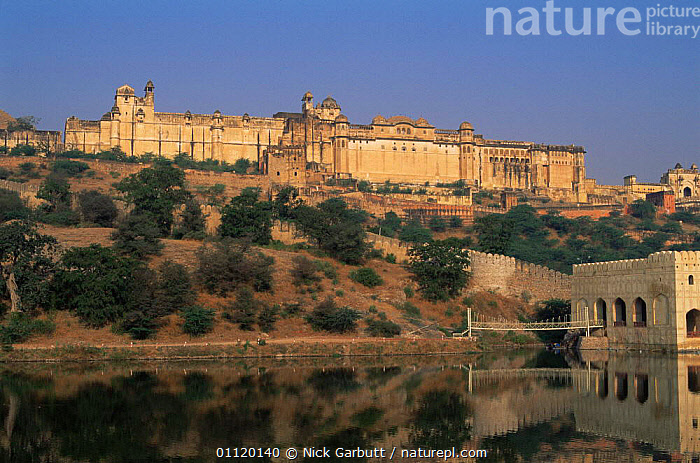 Amber fort, Jaipur, Rajasthan, India  ,  AMBER,ancient,ASIA,attraction,CITIES,forts,hilltop,indian subcontinent,LAKES,landmark,LANDSCAPES,OLD,palaces,TOURISM,INDIAN-SUBCONTINENT,INDIA  ,  Nick Garbutt