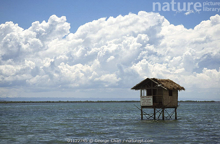 Observatory hut in marine sanctuary, Handumon Is, Philippines  ,  ASIA,BUILDINGS,CONSERVATION,INDO PACIFIC,MARINE,RESERVE,SOUTH EAST ASIA,SOUTH-EAST-ASIA  ,  George Chan