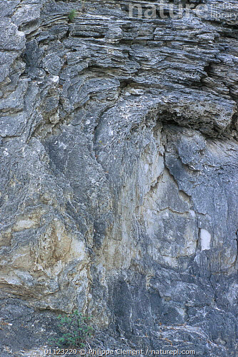 Solidified lava patterns, Yellowstone National Park, Wyoming, USA  ,  CLOSE UPS,LANDSCAPES,NORTH AMERICA,NP,ROCK FORMATIONS,VOLCANIC,VOLCANOES,Geology,National Park,USA  ,  Philippe Clement