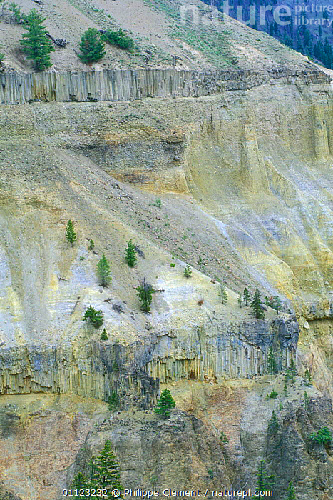 Basalt columns at Tower, Yellowstone National Park, Wyoming, USA  ,  GEOLOGY,LANDSCAPES,LAVA,NORTH AMERICA,NP,ROCK FORMATIONS,VERTICAL,National Park,USA  ,  Philippe Clement